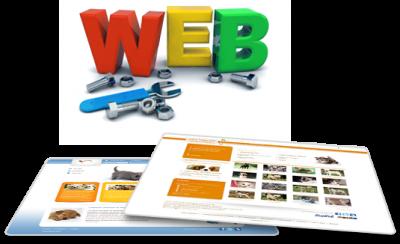Tuyển dụng Chuyên viên Quản trị Website & Marketing Online